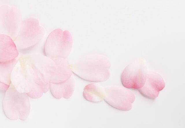 花びらのイメージ画像