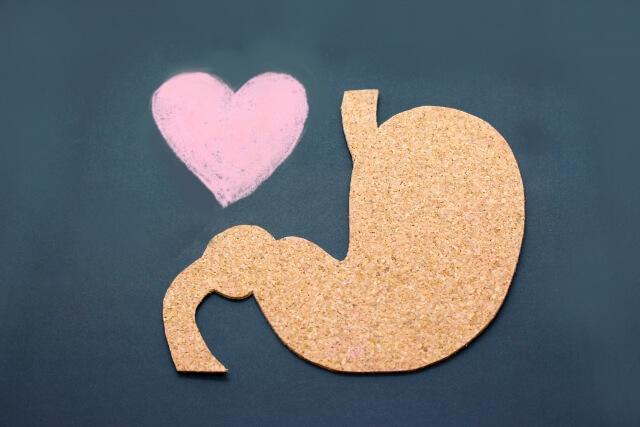 胃のイメージ画像
