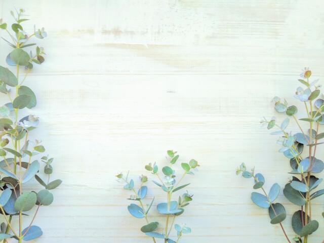 花のイメージ画像